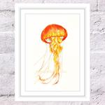 Orange Jellyfish Print, A4 Size Watercolour Jellyfish, Sea Life Print