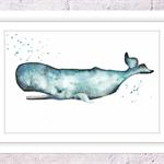 Sperm Whale Print, A4 Size Watercolour Whale, Sea Life Print