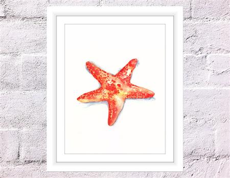 Starfish Print, A4 Size Watercolor Starfish, Sea Life Print