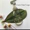 'Make A Wish' Dandelion Seed Resin Pendant