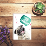 pugs and kisses birthday/any day card