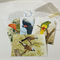 Bird Lovers Stationery, Blank Card set, Australian Birds Card Set,  Snail Mail