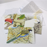 Australian Birds Card Set, Bird Lovers Stationery, Card Writing Set, Snail Mail