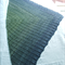 Woman's Lacy Shawl, Pure Wool Green / Blue