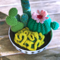 crochet cacti in a bowl, colourful cactus you can hug