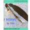 I BELIEVE IN YOU bookmark with real dandelion seeds