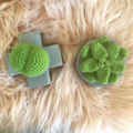 Hugs and Kisses Succulents - Free Shipping