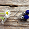 Blue Sapphire Gemstone & Tibetan Bead Earrings