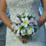 Frangipani & Rose Brides Bouquet