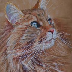 Custom Pet Portrait, Graphite or coloured pencil drawing or watercolour painting