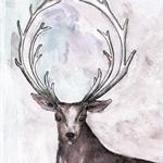 Deer Stag Print A4