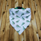 Dog bandan, pet bandana, medium bandana, cactus bandana, collar bandana.