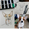 CUSTOM original watercolour & ink illustration {PET PORTRAIT}