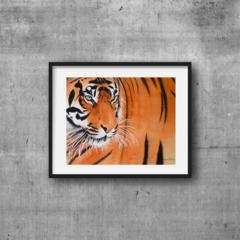 "Tiger, PRINT, Watercolour Painting, 10""x8"" Wall art"