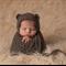 Baby Bear Bonnet  / Newborn Photography / Grey Brown / Soft Teddy Bear Hat