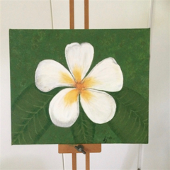 'White Frangipani' Acrylic Painting on Canvas