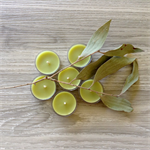 Billy Tea - Beeswax - Bush Tea Lights