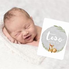 Gender Neutral Baby Milestone Cards. Unisex Sweet Deer. Monthly Pack of 13 Cards
