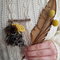 mini woven necklace - mustard pop!