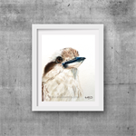 "Kookaburra, Print, 8' x 10"" Coloured Pencil, Australian Birds,"
