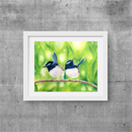 "Blue Wrens, Print, 8' x 10"" Coloured Pencil, Australian Birds,"