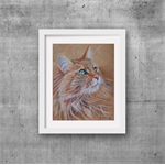 "Domestic Cat, Coloured Drawing, PRINT 8""x 10"" Art"
