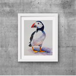 "Puffin Bird, Animal, wildlife - PRINT, Watercolour Painting 8""x10"""
