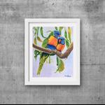 "Lorikeets, Print, 8' x 10"" Coloured Pencil, Australian Birds,"