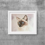 "Ragdoll Cat, Print, 8' x 10"" Watercolour, Cat painting"