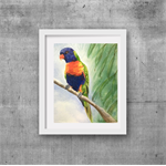 "Lorikeet, Print, 8"" x 10"" Watercolour, Australian Birds"