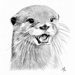 Custom Otter Pet Portrait Drawing in Graphite From Your Photograph