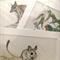 "3 x Australian Wildlife Art Prints 12""x 8"" wall art with matt frame board"