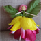 Flower Fairy Doll Steiner 💗 Each miniature fairy handmade ☆ Ready to send ☆