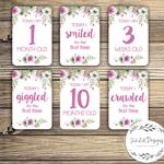 Baby Milestone Cards - Vintage Floral - Girl