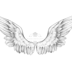 10x8 Angel Wings Art Print Pencil Drawing
