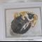 Mary Rowan's Painted Gift Cards