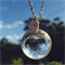 Real Dandelion 'Make A Wish' Necklace