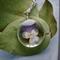 Real Viola Flower Necklace