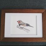 Finch Original in frame