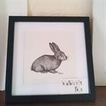 Framed Rabbit Original