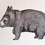 Wombat Original