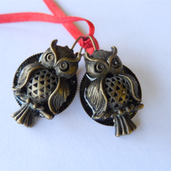 Owls, Night owl, Striking bronze and black