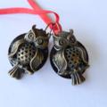 Owls, Night owl, Striking bronze and black