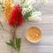 Bush Honey - Beeswax - Bush Tin Candle