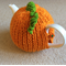 Pumpkin Tea Cosy with White Tea Pot