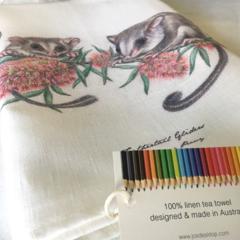 Feathertail Glider Tea Towel, Australian wildlife illustration, native animals