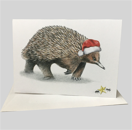 Australian Christmas Card with Echidna in santa hat and gold star ants wildlife