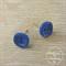 Blue - Two Hole - Button - Stud Earrings