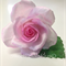 Edible Wafer Paper Rose Cake Topper - LIGHT PINK