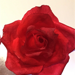 Edible Wafer Paper Rose Cake Topper - RED